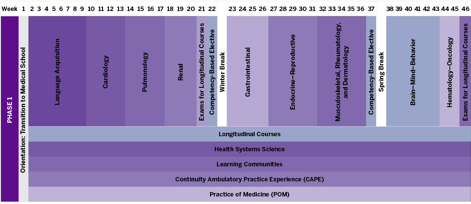 MEDLI Curriculum Graphic Phase One Schedule